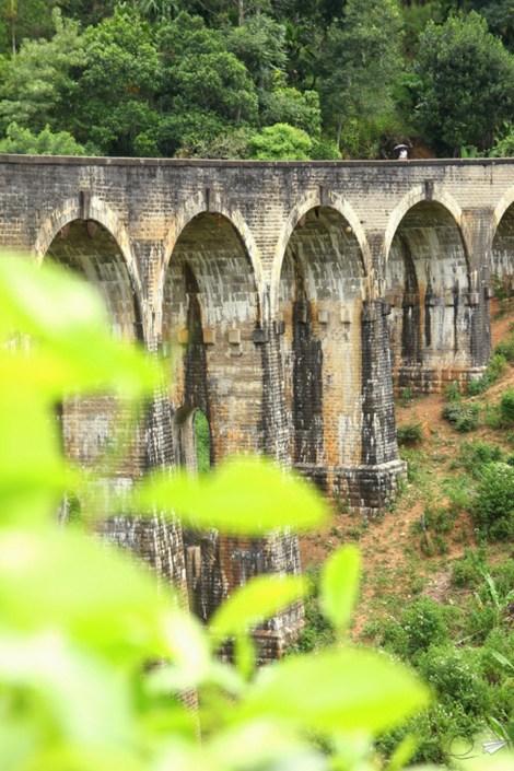 Nine Arch Bridge en Ella