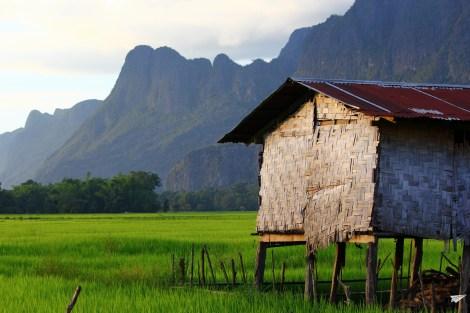 Arrozales de Laos